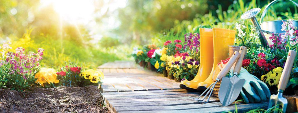 Merveilleux Premier Gardens   Landscape Garden Design   Newcastle